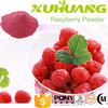 GMP Factory Supply The Top Quality and High Content Raspberry Powder