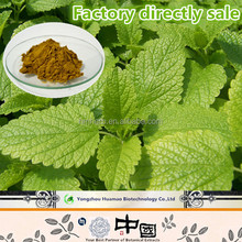 Hot Sale GMP Certificate 100% Pure Natural Lemon balm Powder Extract