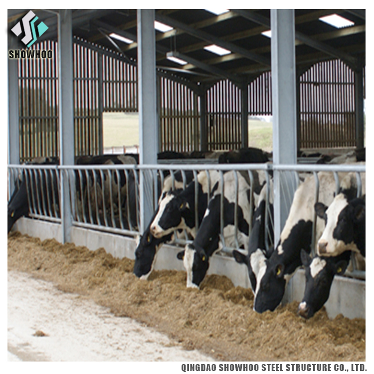 0852_cow_barn