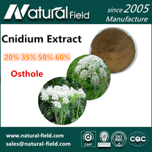 Wholesale Price Healthy Osthole 50%