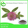 Hot product Red clover Extract powder leaf and flower of Trifolium pratense L.
