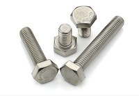 DIN933 hex bolts and nuts/304 stainless steel bolt and nut or white zinc