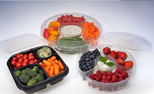 Plastic Food Container,plastic blister packaging tray