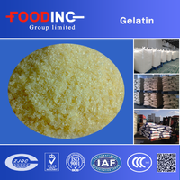 Bulk unflavored halal beef gelatin powder(bovine cow skin/bone gelatin)from gelatin factory