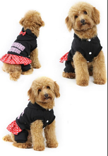 Free Shipping Pet Dog Clothes Teddy Autumn Winter pet coat