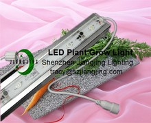 48inch IP68 Waterproof High Power Tomato Grow LED Lighting
