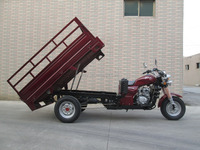 South America Strong Power Semi-Closed air Proof Middle Engine 250CC Cargo Adult Tricycle With Passenger Seat