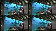 swimming underwater dancing LED screen