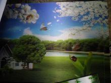 wholesale beautiful 3d scenery wall painting