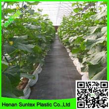 2015 hot promotion 100% virgin PP ground cover weed control mat ,grass prevention barrier fabric for cucumber