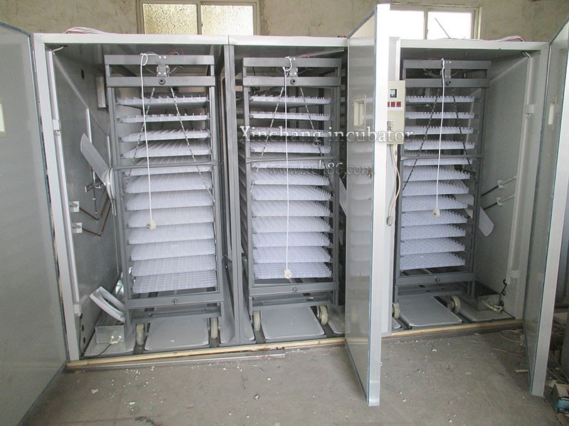 XCH-12672  Chicken Egg Incubator For Sale