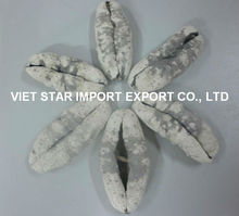 DRIED WHITE TEAT FISH/ SEA CUCUMBER