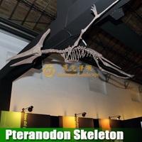 Artificial fake dinosaur skeleton replica Pteranodon Skeleton