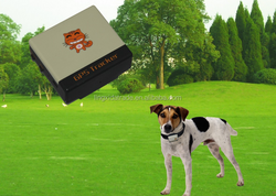 High quality clothing dog training collar