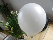 "new arrival 10""colorful latex pearlized balloon"