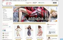 Professional Multi Languages Website Design