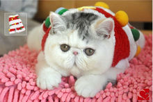 Christmas Cat Clothes