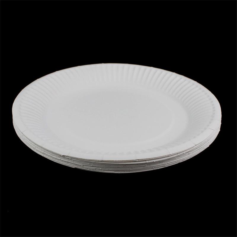 Paper plate10.jpg
