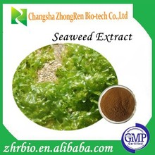 GMP Manufacture100% Pure Nature Seaweed Extract Acid 10%