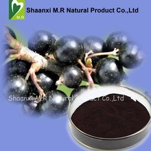 Factory Supply Black Currant Extract Anthocyanins Powder