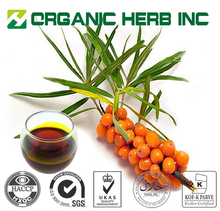 Halal Certificates Natural seabuckthorn berry oil factory export for wholesale