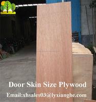 3 Ply Board, Door Skin Plywood