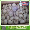 Jinxiang 10kg Bulk Garlic ,Nice Garlic