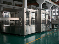 Water bottling and packaging machine
