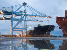 Quality professional shipping rates from china to newyork usa