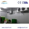 commercial vegetable refrigerator, vegetables cold storage