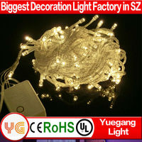 100m 600Leds 2014 Christmas Tree Decorative Purple LED globe string lights with Tail Plug for Wedding Home Ceiling Ornament