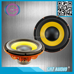OEM 12 Inch GT-S1241 800W Car Subwoofers