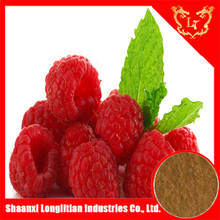 China professional raspberry extract powder 5:1 10:1 20:1 manufacturer , have in stock and with free sample