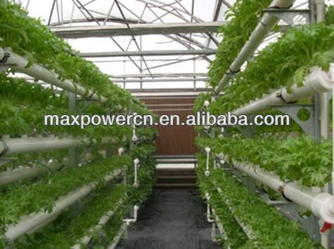 Sistem perdagangan corp greenhouse