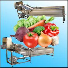 Whirlston fresh fruit and vegetable washing machine