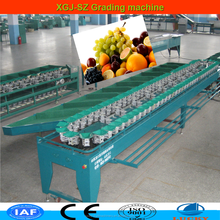 China supplier wonderful weighted vegetable and fruit sortin machine