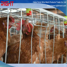 China supplier directly sale chicken breeding cage, chicken battery cage