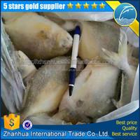 Frozen Golden Pompano Farm Raised Wholesale
