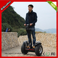 Arrival 2 wheel self balance two wheeler auto-balance rechargeable scooter sidecars for sale with remote key