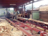 Hot sale circular sawmill with low price