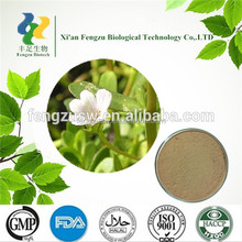 100%Natural bacopa monnieri extract, bacopa monnieri extract BACOPASID