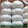 China Fresh White Chinese Garlic wholesale