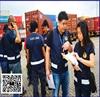 Yantian Custom Declare Service Company