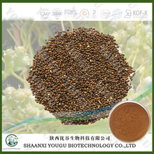 Herbal medicine extracts manufacturer supply cuscuta seed extract glucoside dodder seed extract