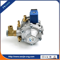 Auto Gas Fuel System for CNG Conversion Kit