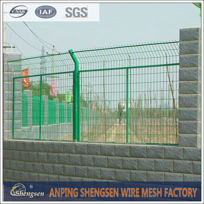 Colorful PVC Coated/ Galvanized Welded Wire Mesh