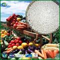 De CHINA fuente de alimentación fertilizante compuesto de calcio nitrato ( Ca.2HNO3 )