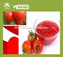 Canned tomato paste tomato paste28-30% tomato paste28-30%