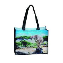 2015 promotional large capacity reusable shopping bag