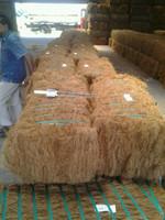 120 kg bales Coconut coir fiber for sale